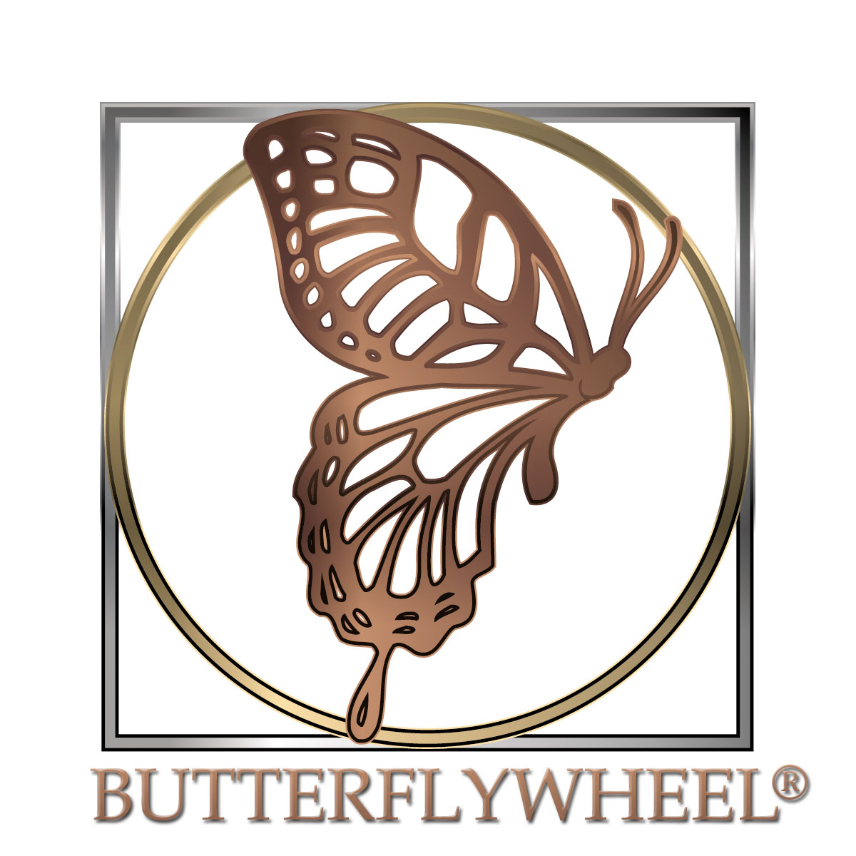 BUTTERFLYWHEEL® Logo - Side view of butterfly within a circle within a square